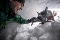 Spaß bei der Junghundeausbildung